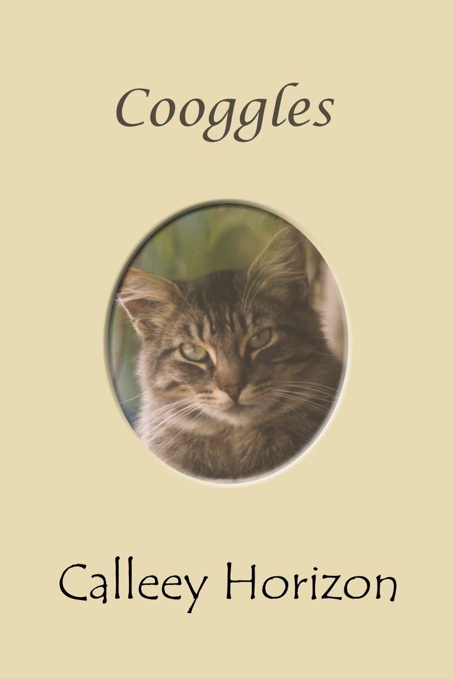Cooggles Book Cover
