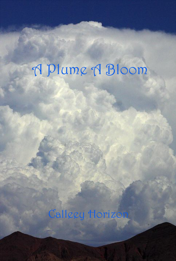 A Plume A Bloom Cover